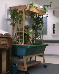 Indoor Kitchen Gardens Similiar Grow Indoor Kitchen Keywords