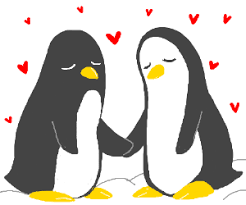 two penguins holding hands. Interesting Holding Two Penguins Holding Hands Flipperswings Intended Two Penguins Holding Hands