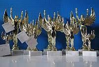 Кубки медали грамоты дипломы купить в Украине цена и наличие на  Кубки медали грамоты дипломы в Украине