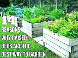 raised bed liner bq plant wooden timber flower sheet garden soil liners landscaping