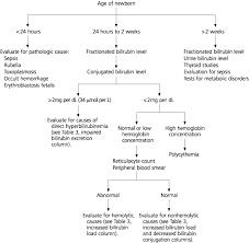 Hyperbilirubinemia In The Term Newborn American Family