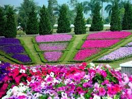 Small Picture Flower Garden Design Small Flower Garden Design Ingenious Ideas 29