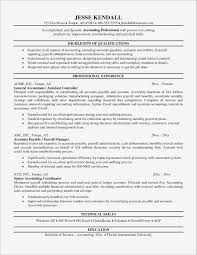 Sample Resume For Experienced Banking Professional Resume