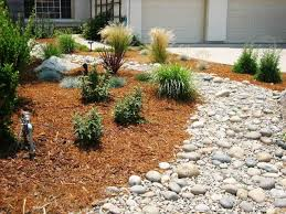 Small Picture Remember that we can help you with drought tolerant landscaping