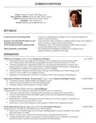 Consulting Resume Interesting 60 Consultant Resume Templates Free Word PDF Samples