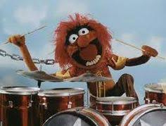 animal muppet drums. Simple Animal Animal  Drummer Peopleiadmire Intended Muppet Drums A