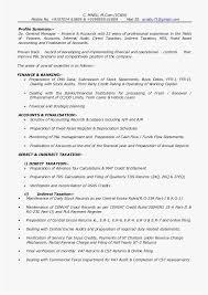 Loan Auditor Sample Resume