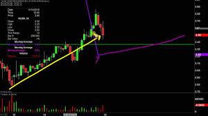 Svra Stock Chart Solid Biosciences Inc Sldb Stock Chart Technical Analysis For 11 15 19