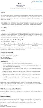 Cv Layout And Information Professional Resumes Sample Online