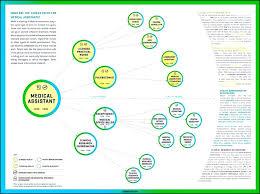 Career Timeline Template Template Career Timeline Template Map Fresh Nursing Templates 14