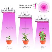 Best Led Light For Plant Growth Top 15 Best Led Grow Lights Reviews In 2020 Growing