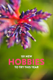 101 Hobbies To Start In 2020 Listed By Types Of Hobbies