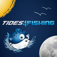15 Abiding Tide Chart Nsw Australia