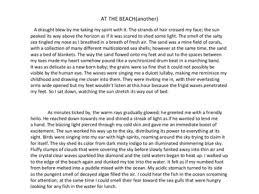 descriptive essay descriptive essay at com org descriptive essay on the beach