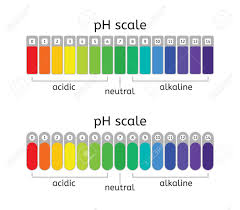 Ph Chart Alkaline Ph Scale Of Acidic Neutral And Alkaline Value Chart For Acid