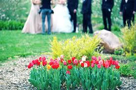 <b>Платье тюльпан</b> - Сток картинки - iStock