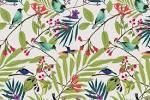 bird wallpaper uk