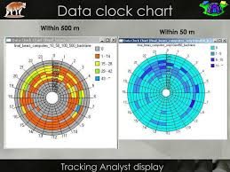 Data Clock Chart Ppt Continuous Data From Gps Collars Analyzing Time And