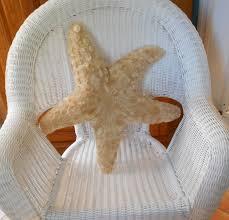 Bulk Starfish Decorations Tan Starfish Etsy