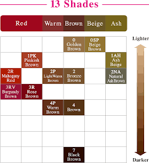 Liese Color Chart
