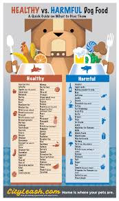 Did You Feed The Dog Chart Printable Healthy And Harmful Food For Dogs Poster