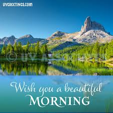 good morning image with blue skies plemented by bright green trees