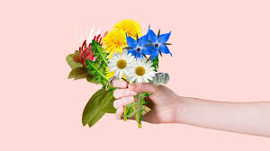 11 Edible Flowers With Potential Health Benefits