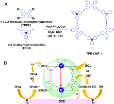 Tetraphenylenthene-Based Conjugated Microporous Polymer for  Aggregation-Induced Electrochemiluminescence. - ACS Appl. Mater. Interfaces  - X-MOL