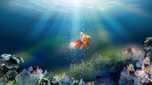 Fish 3d Wallpaper Free Download For Pc