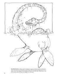 Elasmosaurus Plesiosaur Coloring Page From Plesiosaurus