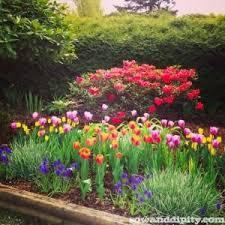 Small Picture Flower Garden Designs The Gardens