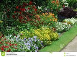 english garden flowers. Flower Bed With Assorted Plants Stock Image - Image: 27886721 English Garden Flowers