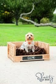 Outdoor Dog Furniture Foter