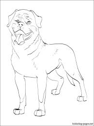 rottweiler animal coloring pages