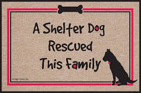 Amazon.com : High Cotton Shelter Dog Doormat : Doormat Funny ...