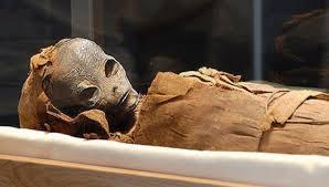 """Résultat de recherche d'images pour """"Entire Alien Family Unearthed In Nazca, Peru."""""""
