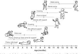 Figure 1 From The Development Of Motor Behavior Semantic
