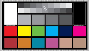 Dgk Digital Kolor Pro 16 9 Chart Set Of 2 Large Color Calibration And Video Chip Charts 18 Gray White Balance Cards