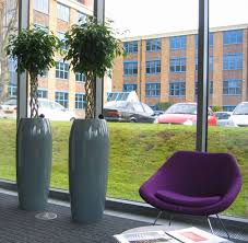 office plant displays. Main Office Reception In Edgbastons Business District Tall Circular Spin Plant Displays G