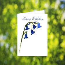 Birthday Greetings Download Free Enchanting Bluebell Birthday Card Download Watercolor Blue Bell Flower Etsy