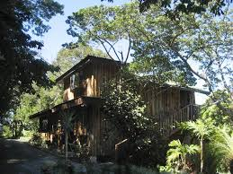 Email And Birdwatching In Comfort  Picture Of Hidden Canopy Treehouse Monteverde Costa Rica