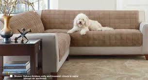 alluring sofa cover for pets with deluxe armless furniture cover for sofa
