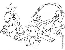 pokemon battles coloring pages combusken and marshtomp pokemon coloring pages flygon flygon pokemon coloring pages on flygon coloring pages
