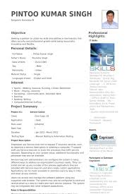 Programmer Analyst Resume Samples Visualcv Resume Samples Database