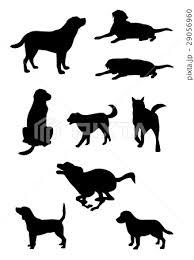 シルエット動物動物犬のイラスト素材 29056960 Pixta