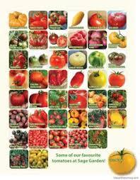 191 Best Garden Seeds Images Garden Seeds Seeds Garden