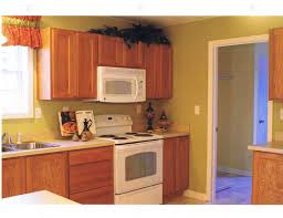 Kitchen Cabis And Wall Color Artnak Kitchen Cabinets Ikea Kitchen