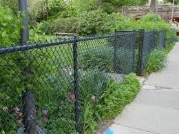 rusty chain link fence ideas