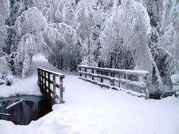 Snow Scenes Wetcanvas