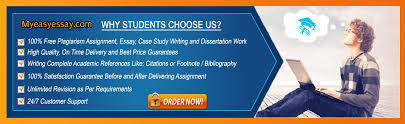 about us com best custom essay writers about us lance essay experts